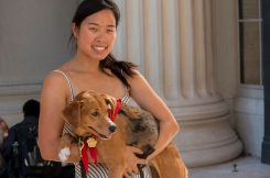 Graduate student Stephanie Ku holds her dog, Wingnut, at an MIT Puppy Lab event on an unusually warm October afternoon. Ku is founder of the Puppy Lab, which launched in May as part of MIT's MindHandHeart Initiative.  Photo: Denis Paiste